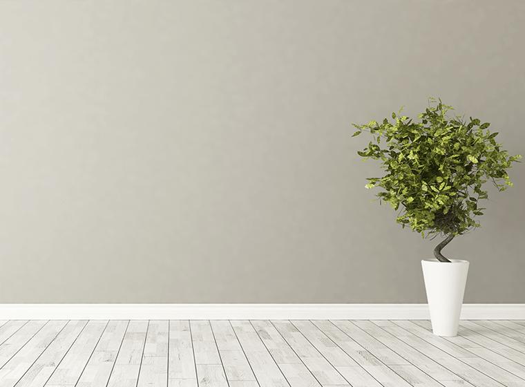 Grey Hallway Wall