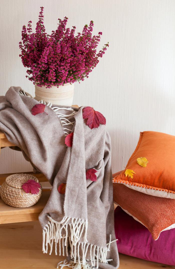 Autumn Flowers and Cushions for Your Home