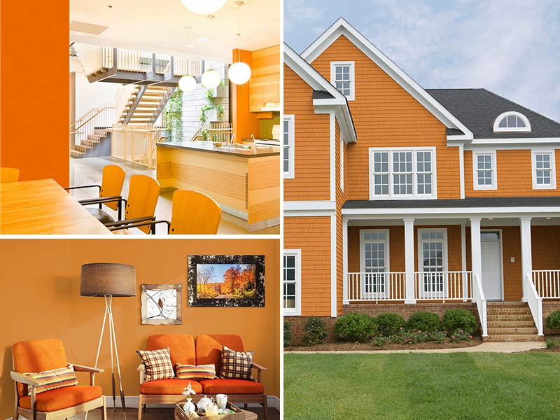 """""""Amber accented kitchen, Amber painted living room, and Amber home exterior"""""""