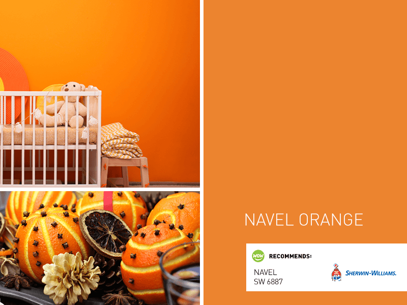 Naval Orange Paint Color