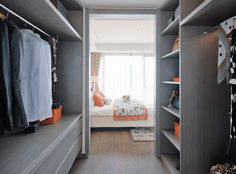 Tidy Walk-in Closet